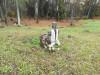 Кладбище «Vaiteņu», волость Вилцес, октябрь 2019 г. Кто-то нашел могилу своих предков.