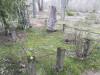 Кладбище «Gauriņu», волость Залениеку, январь 2020 г. Памятник и ограда на месте захоронения купца Растеряева.